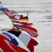 В точке Северного Полюса :: Tatiana Belyatskaya
