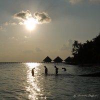 Мальдивы 11 :: Ekaterina Stafford