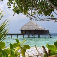 Мальдивы 15 :: Ekaterina Stafford