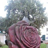 Роза из камня. :: Светлана Калмыкова
