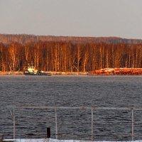 на дворе уже зима а по реке тащят дрова :: petyxov петухов