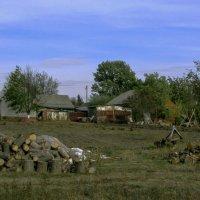 Сельская жизнь :: Alis AN