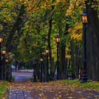 Осенний тихий листопад. :: Альмира Юсупова