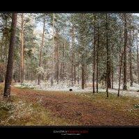 Зима в октябре. :: Дмитрий Постников