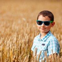 пшеница :: Татьяна Ворчик