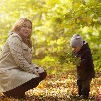 Солнечное семейство :: Татьяна Шевченко