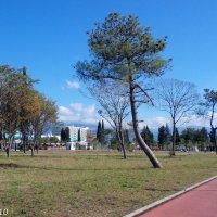 Олимпийский парк :: Нина Бутко