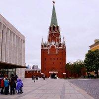 В Кремле :: Владимир Болдырев