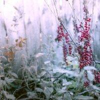 Цвет октября :: Альберт Ханбиков
