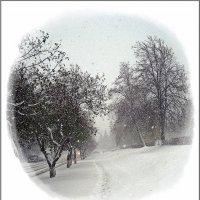 Воспоминание о будущей зиме :: muh5257