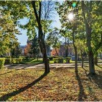 Осеннее солнце :: Alexandr Яковлев