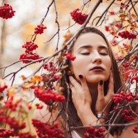 Рябиновый портрет :: Евгения Тарасова