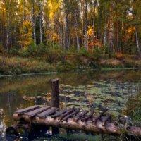 Подмостки в осень... :: Roman Lunin