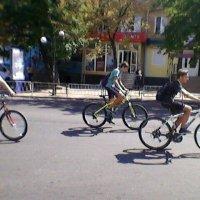 ВелоТранспорт! :: Миша Любчик