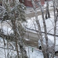 Первый снег :: Domna Kuznechic