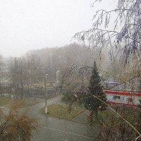 Снег ложится , летает , летает ... :: Мила Бовкун