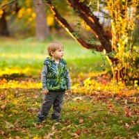 осень :: Марина Ионова