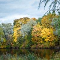 Осень :: Юля Тихонова