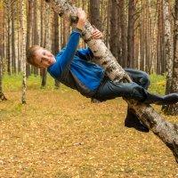 прогулка в лесу :: Дмитрий Сахнов