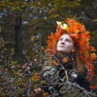 Холодная Измайловская осень - 4 :: Igor Veter