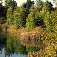 Осень :: Арина Минеева