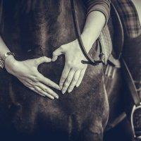 Любовь к лошадям :: Александра Печорина