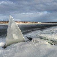 Акула льда :: Алексей Бочкарев