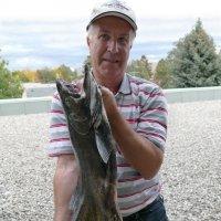 А это рыбка пойманная мной вчера... :: Юрий Поляков