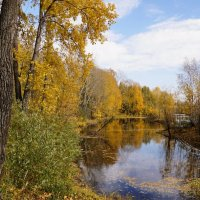 Осень :: Наталия Григорьева