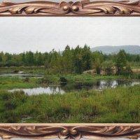 Пейзаж  с  болотом. :: Анатолий 2015 Трепышко