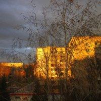 Перед снегопадом на Покров . :: Мила Бовкун
