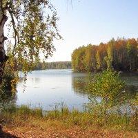 У озера :: Сергей