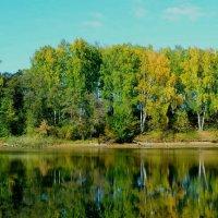 Озерное зеркало :: Милешкин Владимир Алексеевич