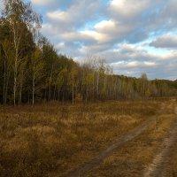 лилово-мглистая осень :: Saloed Sidorov-Kassil