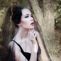 Черный лебедь :: Ирина Овсюк