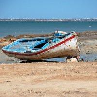 Зарзис. Тунис :: Дмитрий Кияновский