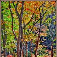 Золотая осень 3 (лесная сказка) :: Ingwar