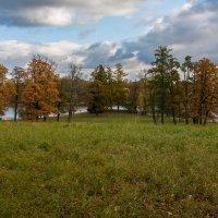 Осенне-парковое :: Анатолий Мигов