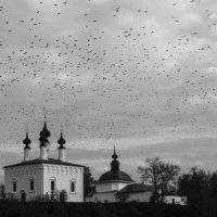 Нашествие :: Ольга Мансурова