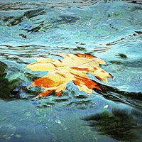 Плывущая осень :: Alexander Andronik