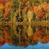 """Colors of Canadian Fall"" :: Andy Zav"