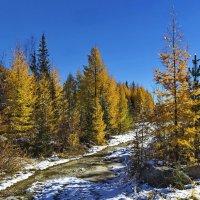 Золотая осень :: Анатолий Иргл