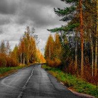 В дороге. :: Алексей Матвеев