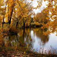 На берегу осени :: Наталия Григорьева