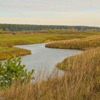 Осенний пейзаж. :: Виктор Евстратов