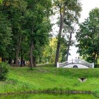 На мостике. :: Сергей Бурлакин