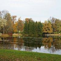 Золотая осень в Екатерининском парке :: Елена Павлова (Смолова)