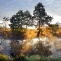Островок восходящего солнца... :: Андрей Войцехов
