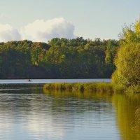 На Плявиньском водохранилище. :: Виктор Михальчик