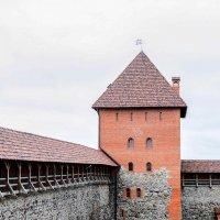 Лидский замок :: Марта Новик